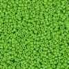 Japanese Seed Bead, Miyuki Round Rocailles 11-411E, Opaque Light Green, 11/0 30 grams
