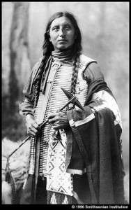 plate31a-teton-dakota-pre-1900-hair-pipe-breast-plate