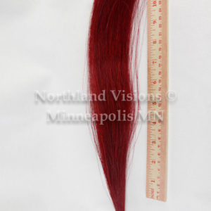 11936-Ruler-horse-hair-tail-1oz-dyed-10in-12in