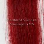 11936-horse-hair-tail-1oz-dyed-10in-12in