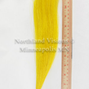 11938-Ruler-horse-hair-tail-1oz-dyed-10in-12in