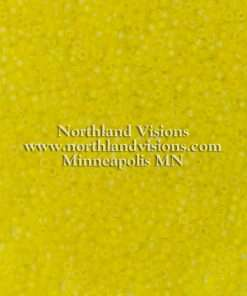 Japanese Seed Bead, Matsuno 11-F252, Transparent Yellow AB Matte, 11/0 30 grams