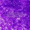 Miyuki Delica Cylinder Bead, DB1315, Transparent Violet, 11/0 7 grams
