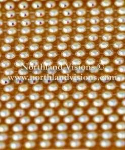 Czech Preciosa Rhinestone Banding, 491-81-301/02, Crystal AB/Gold, ss13, 1 Row